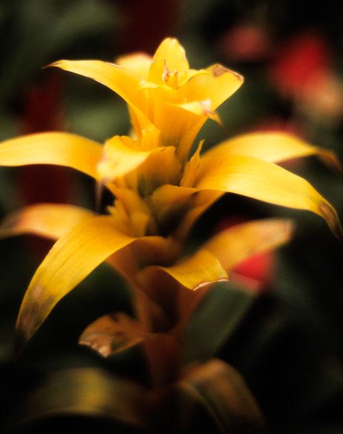 kl-20121023-color-film-0003.jpg
