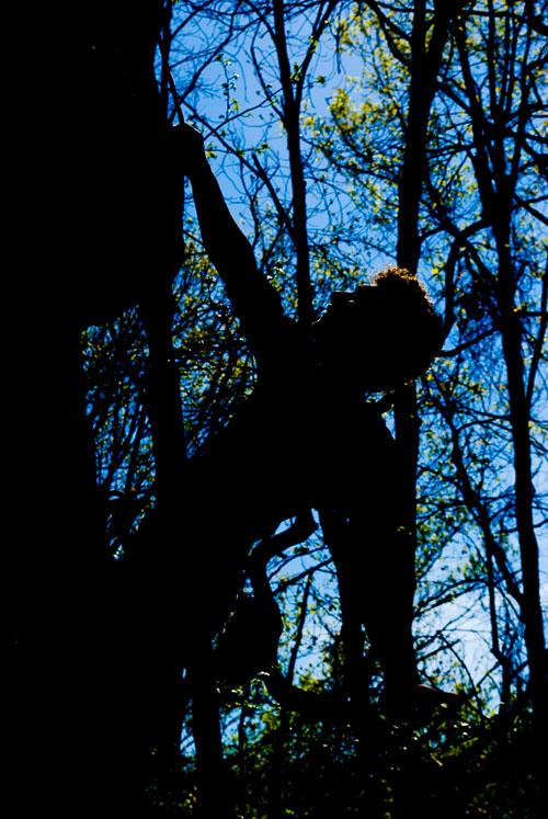 kl-20100410-foster-falls-0040.jpg